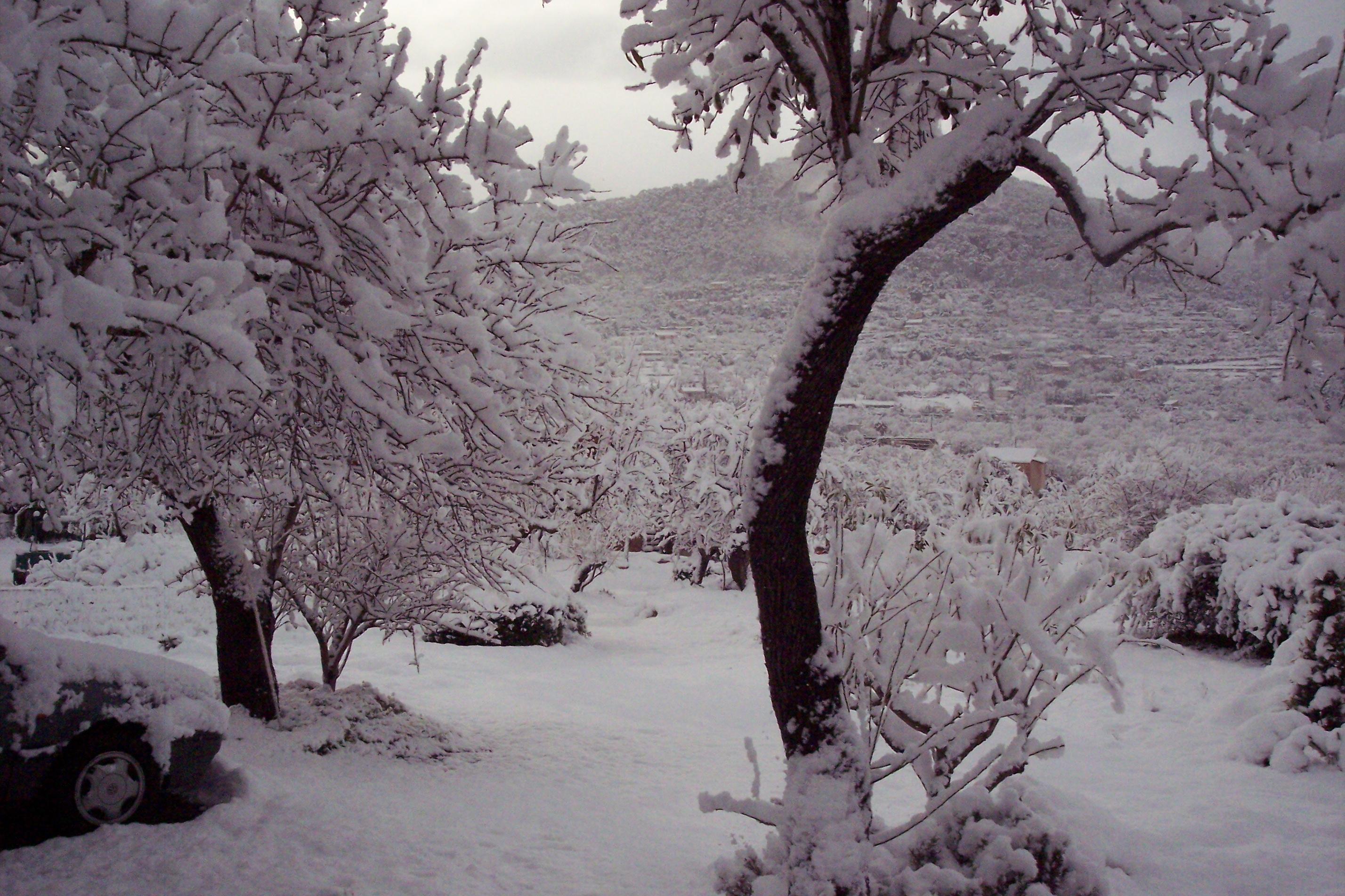 Snow Mallorca 1