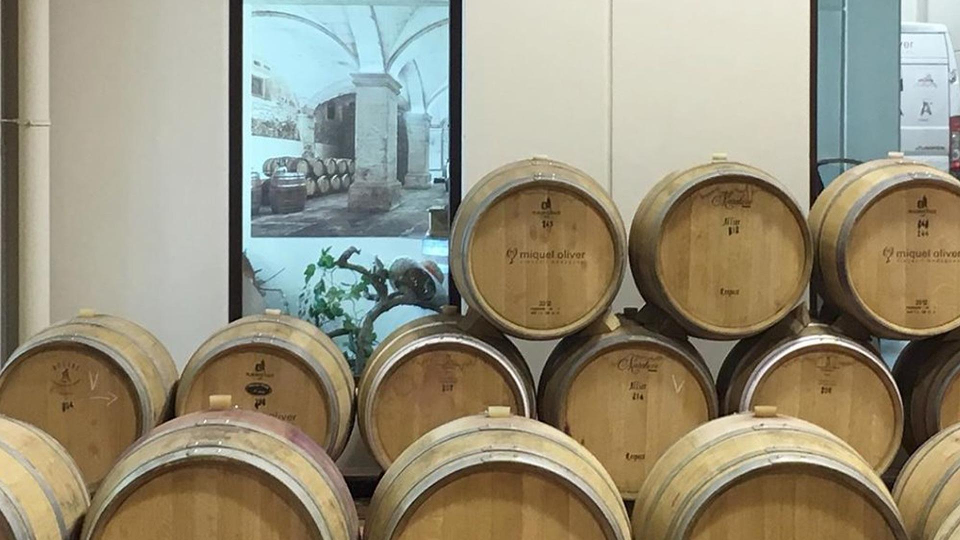 Miquel Oliver bodegues wine barrels