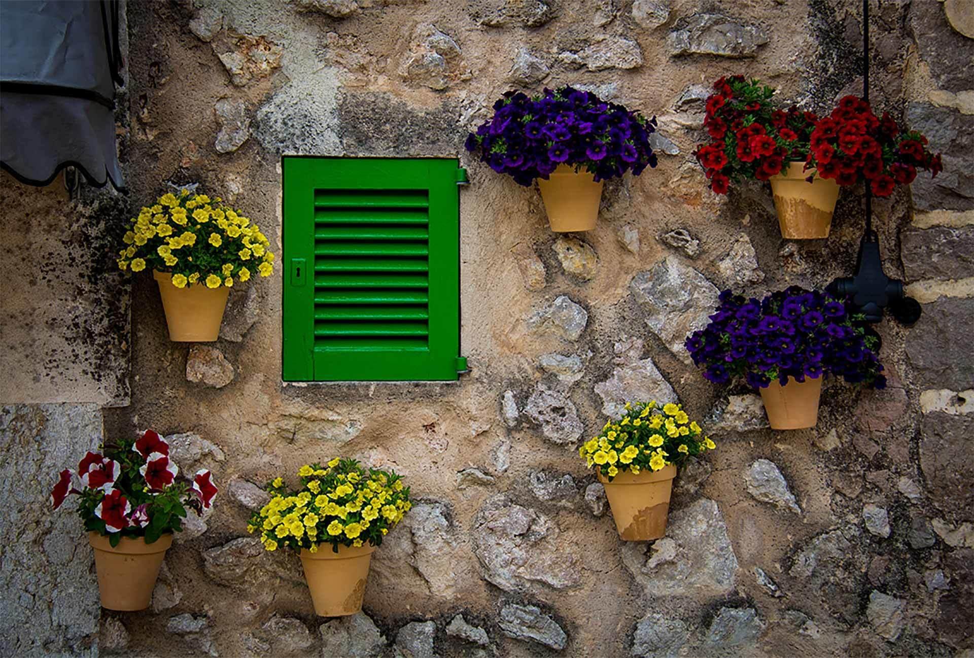Old Finca Valdemossa Flowers On Wall