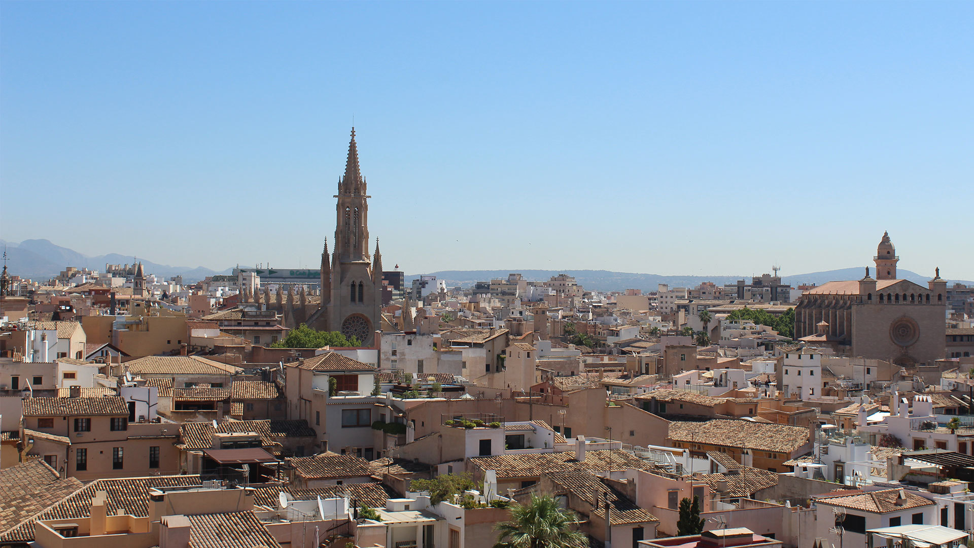 Palma Cathedral Rooftop Adele Chretien Yello There Photography 4