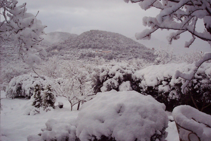Screenshot 2019 01 25 Snow In Mallorca Paradise Covered In Winter Dust