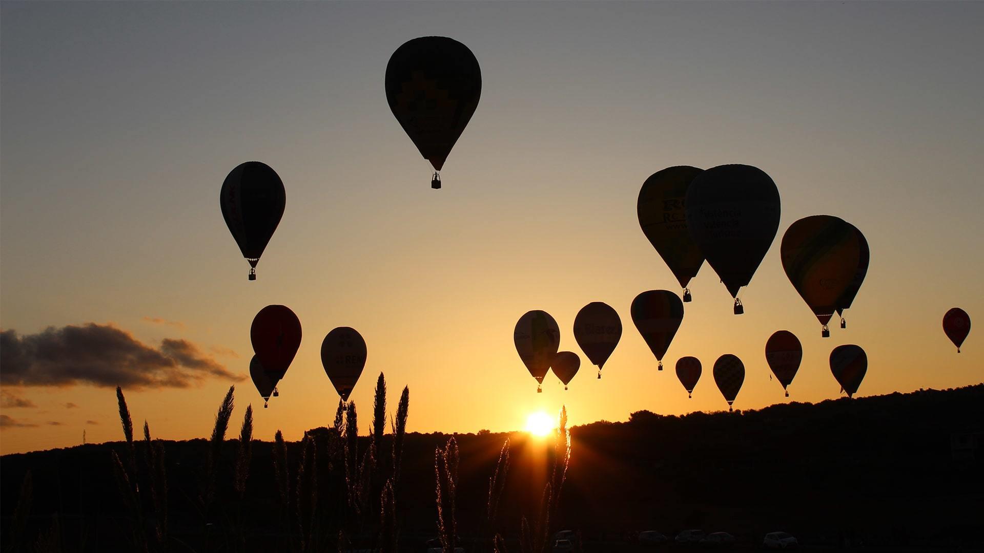 Beautiful sunrise hot air balloons mallorca photo Adele Chretien min