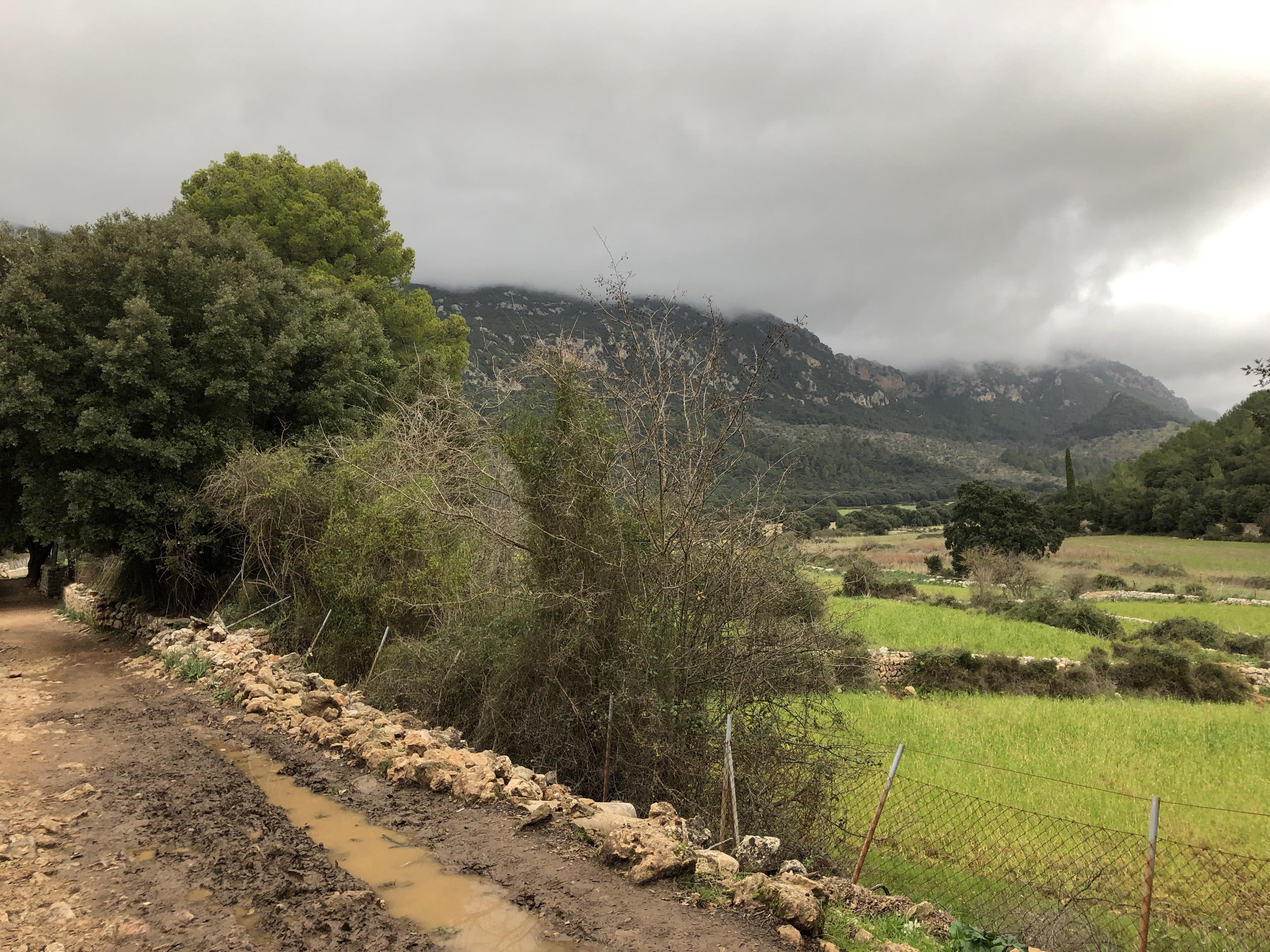 Hike Santa Maria To Orient Mallorca Img 3572