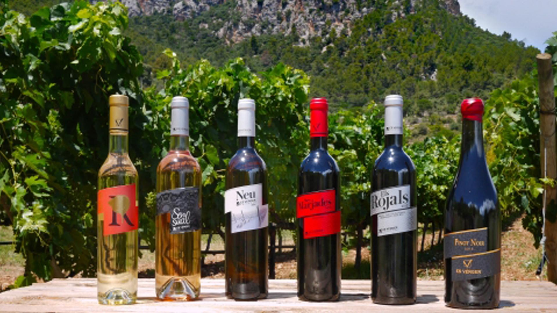 Wine bottles Es Verger